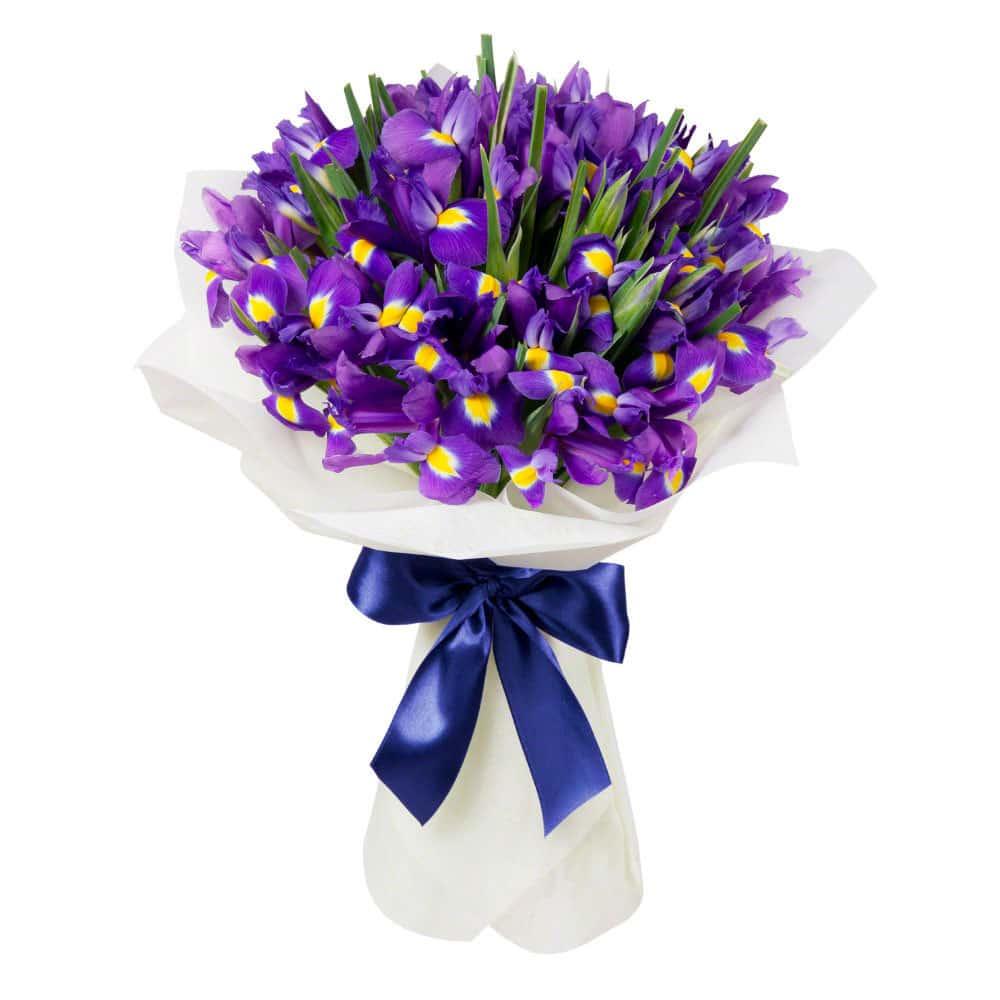 Заказ цветов синие ирисы